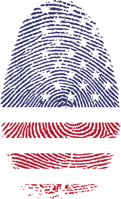 America, Art, Fingerprint, Flag, United States, Usa