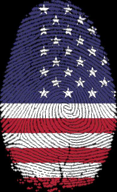 America, Art, Fingerprint, Flag, United States, Usa