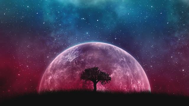 Space, Galaxy, Planet, Universe, Cosmos, Tree