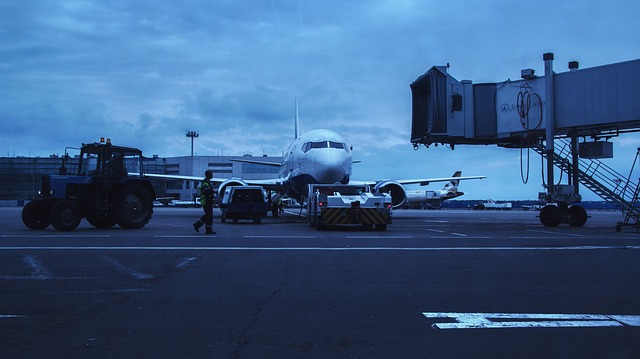 Airport, Domodedovo, Moscow, Russia, Plane, Ural Air