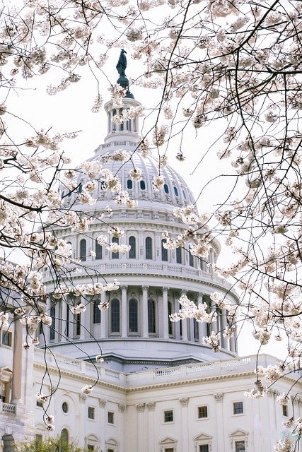 Capital, Usa, Government, Landmark, America