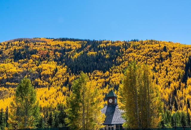 Rocky Mountains, Vail, Colorado, Foliage Nature, Usa