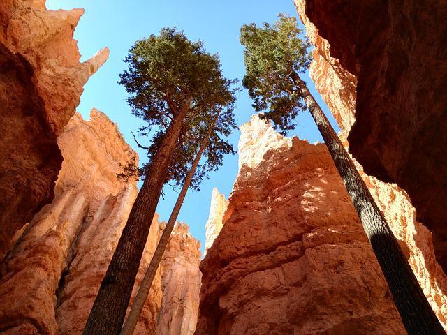 National Park, Bryce Canyon, Usa