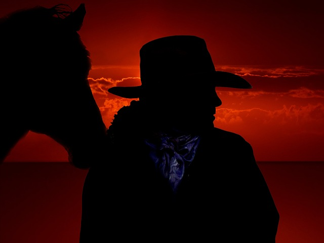 Horse, Cowboy, West, Ride, Usa, Wild West, Silhouette