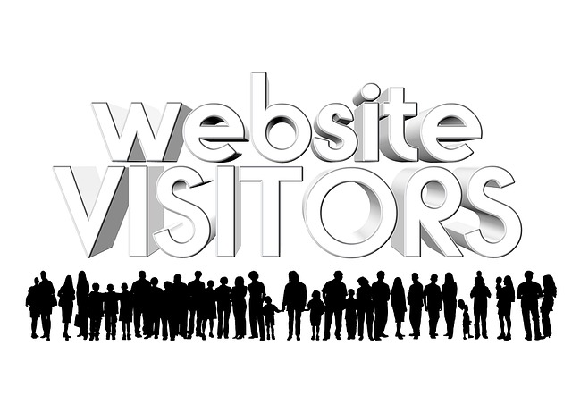 Website, Visitors, Personal, Users, Log, Counter