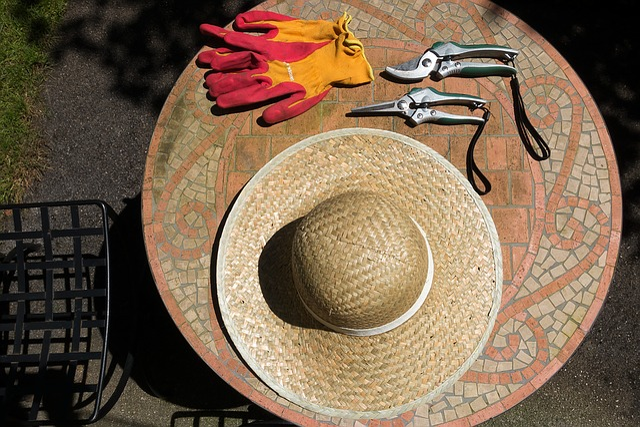 Sun Hat, Protection, Uv Radiation, Scissors
