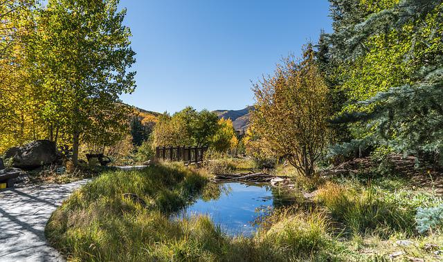Vail, Colorado, Pond, Foliage, Fall, Sky, Nature, Usa