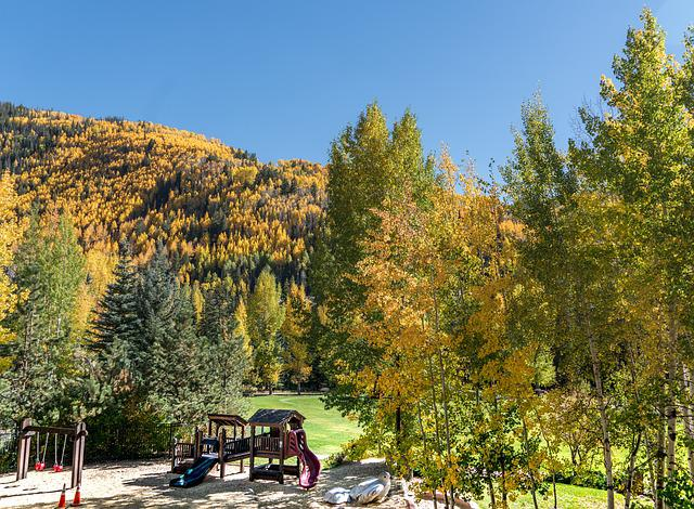 Ford Park, Playground, Vail, Colorado, Foliage, Nature