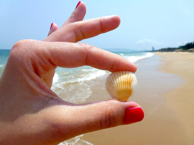 Beach, Seashell, Toenail, Varnish, Hands, The Nail