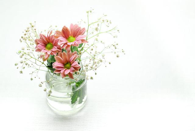 Pink, Flowers, Bowl, Vase, Blossom, Green, Plant