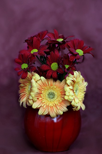 Flowers, Vase, Gerbera, Chrysanthemums, Yellow