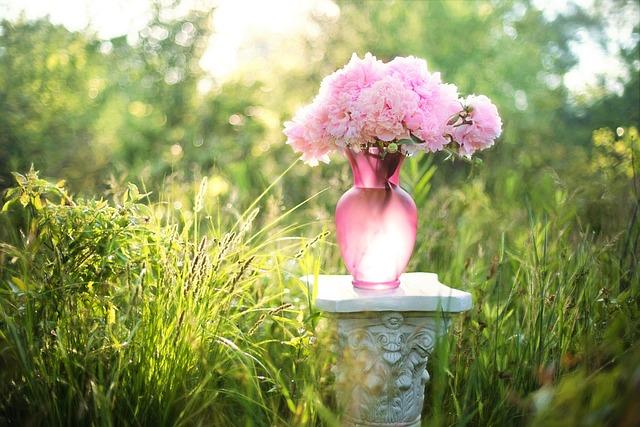 Peonies, Flowers, Bouquet, Vase, Pink, Field, Meadow