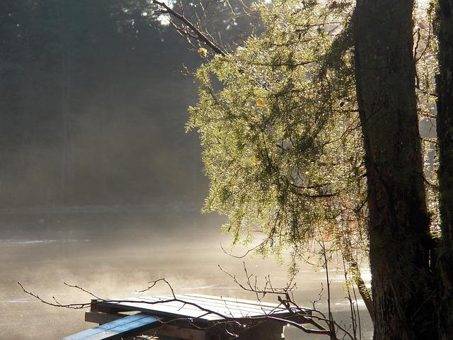 Mist, Fog, Dimma, Mystisk, Lugna, Bro, Vatten, ån
