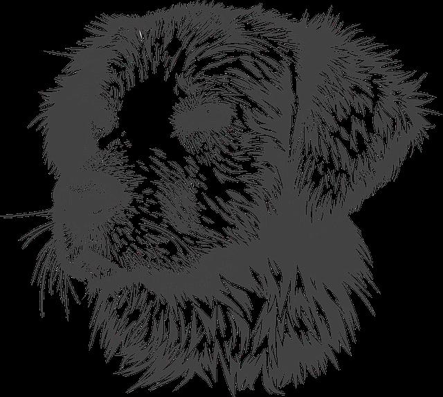 Dog, Animal, Domestic Animal, Doggie, Head, Vector