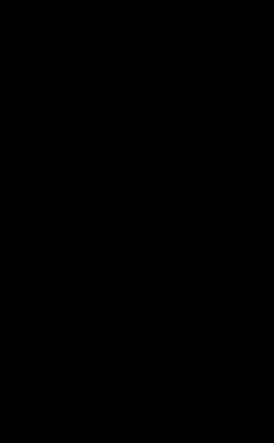 Logo, Bird, Design, Falcon, Vector