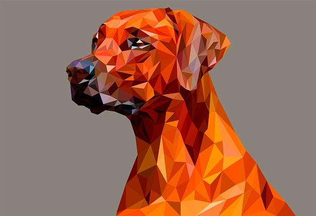 Poly, Low, Vector, Geometric, Illustration, Polygon