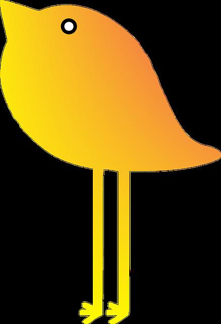 Bird, Vector, Yelow, Summer, Element, Scrapbook