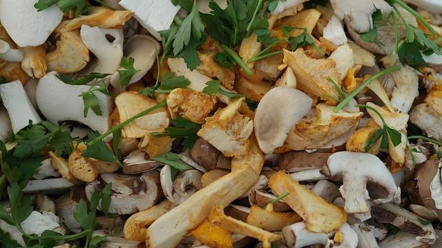Mushrooms, Forest Mushrooms, Nature, Forest, Vegetable