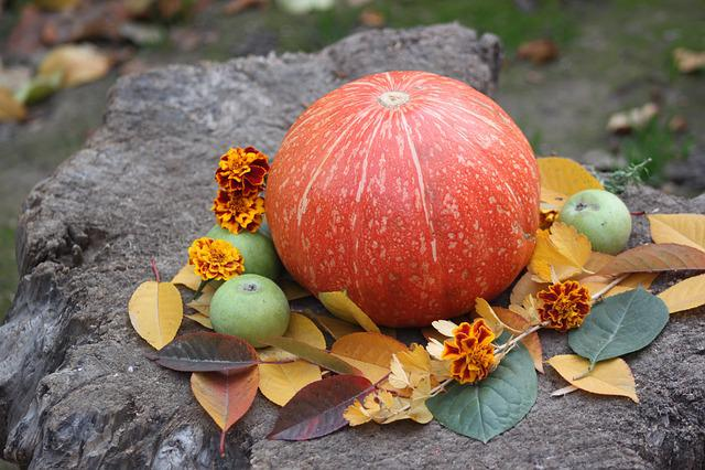 Pumpkin, Autumn, Vegetable, Tasty, Orange