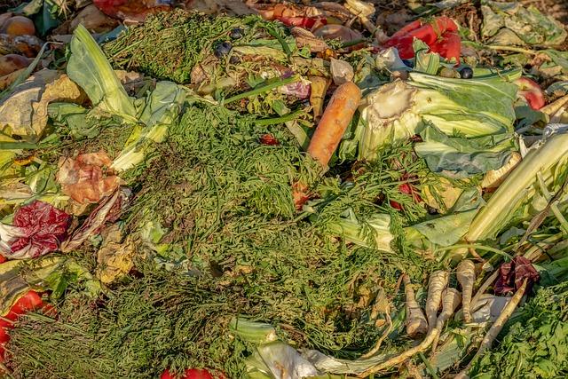 Compost, Garbage, Biological, Waste, Fruit, Vegetables