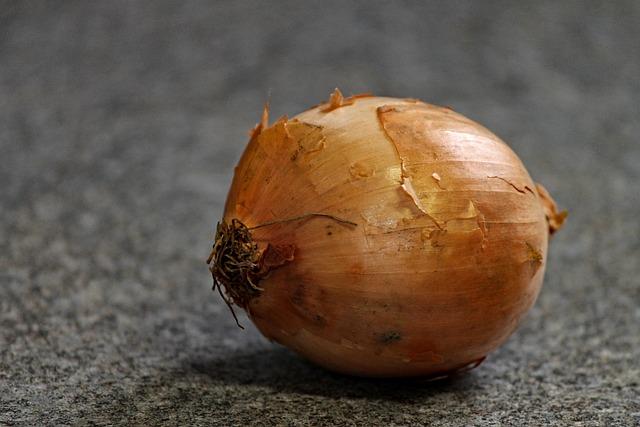 Onion, Cream Onion, Vegetables, Shell, Brown