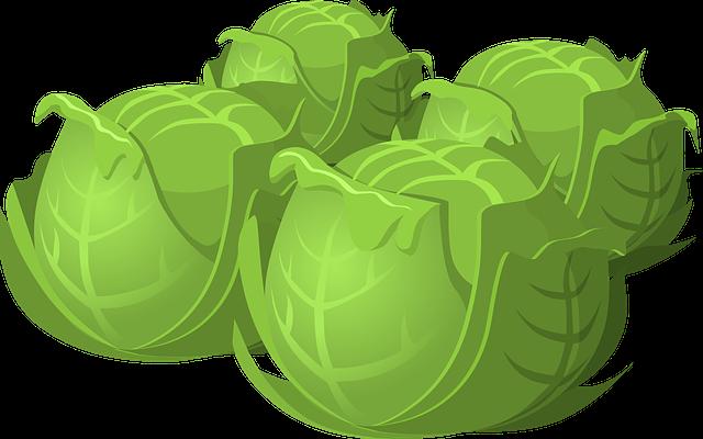 Cabbage, Salad, Vegetables, Food, Healthy, Vegetarian