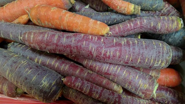 Carrots, Vegetables, Vegetable Garden, Purple Carrot
