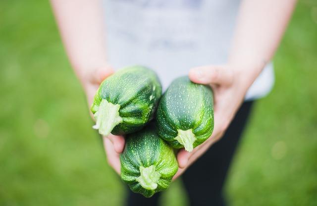 Zucchinis, Vegetables, Green, Fresh, Farmers Market