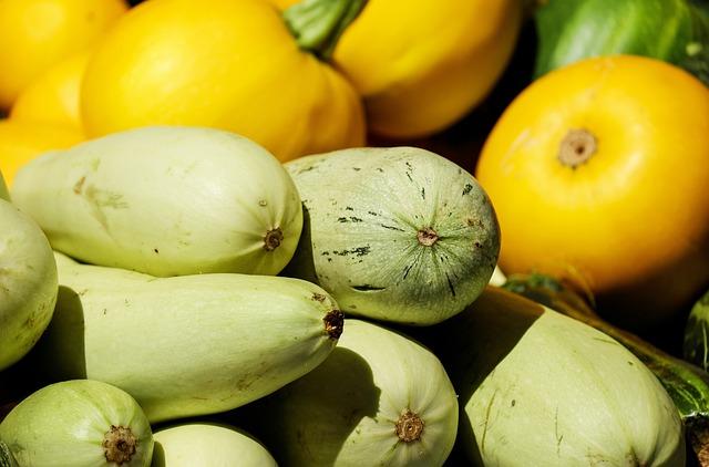 Zucchinis, Vegetables, Fresh, Produce, Organic, Harvest