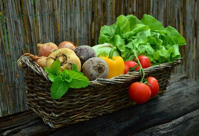 Vegetables, Vegetable Basket, Harvest, Garden, Salad