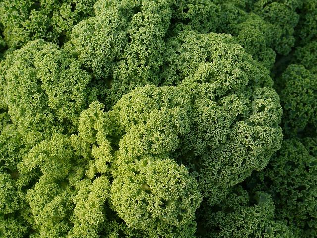 Kale, Kohl, Vegetables, Green, Winter Vegetables, Food