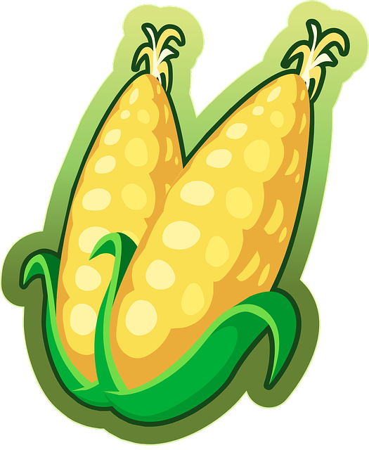Corn, Maize, Vegetables, Food, Harvest, Organic, Yellow