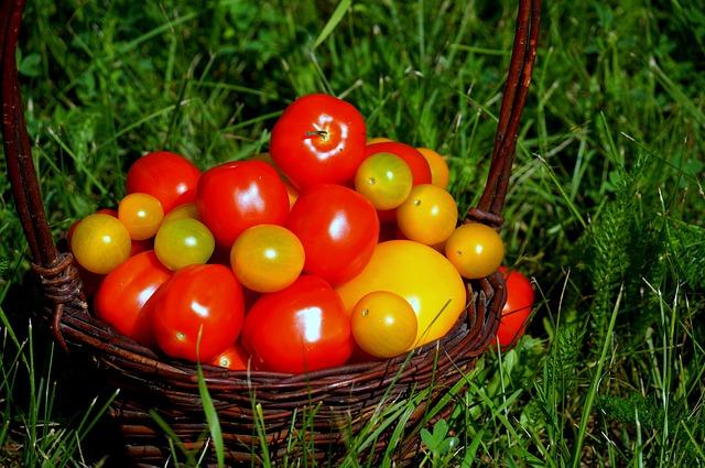 Tomatoes, Food, Vitamins, Nature, Vegetables