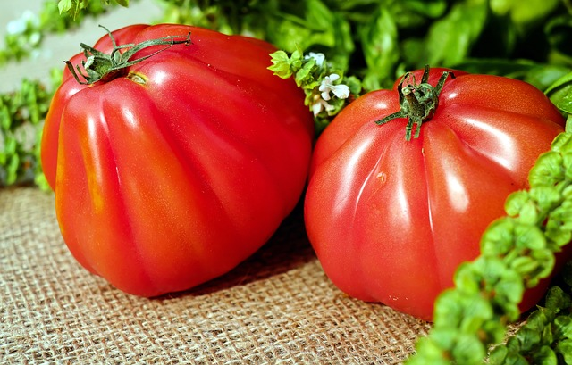 Tomatoes, Red, Food, Vegetarian, Healthy