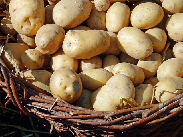 Potato, Autumn, Nature, Vegetarian, Delicious, Eat