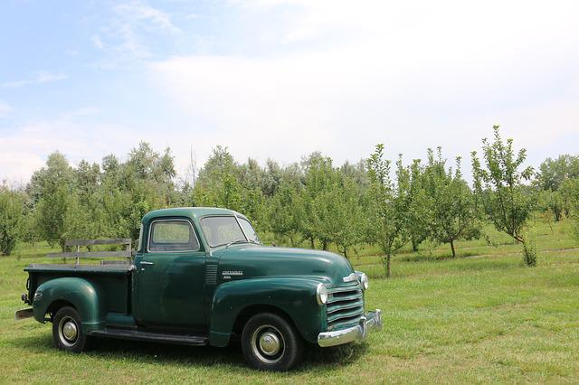 Truck, Farm, Chevy, Agriculture, Transport, Vehicle
