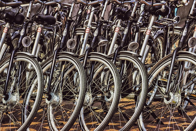 Bicycles, Rent, Cycling, Wheel, Tourism, Vehicle