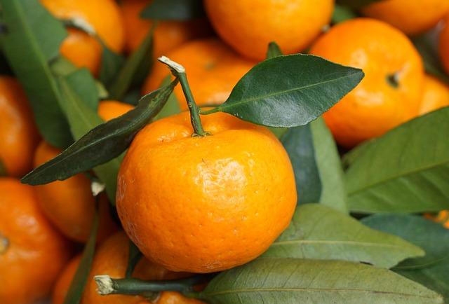 Food, Fruits, Tangerines, The Harvest Season, Vietnam