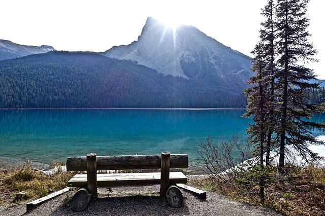Seat, View, Seated, Comfortable, Mountain Lake