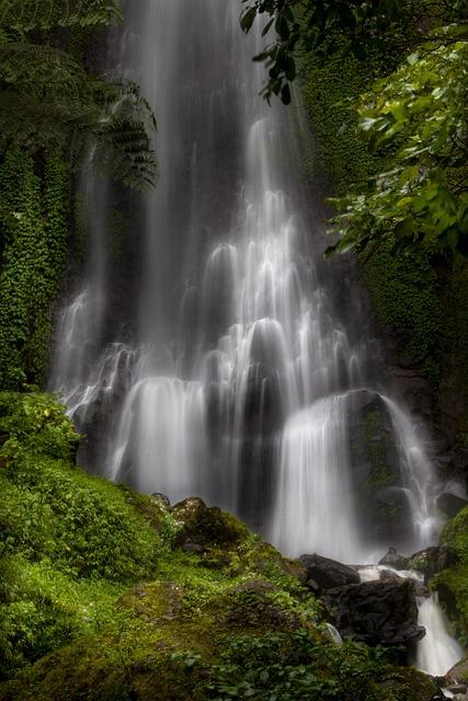 Waterfall, Water, The Tree, Moss, View, Nature