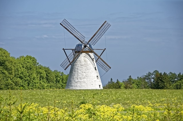 Estonia, Windmill, Historically, Vihula, Architecture