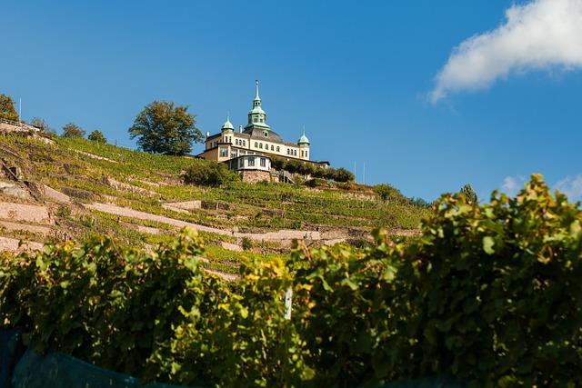 Radebeul, Spitz House, Vineyard, Winegrowing, Wine