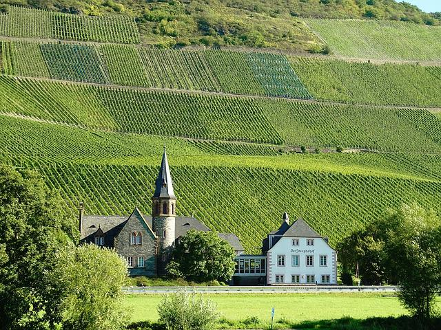 Vineyards, Mosel, Wine Growing Area, Steep Slope, Slate