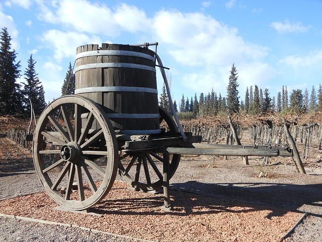 Cask, Wine, Farm, Winery, Vineyards, Wine Production