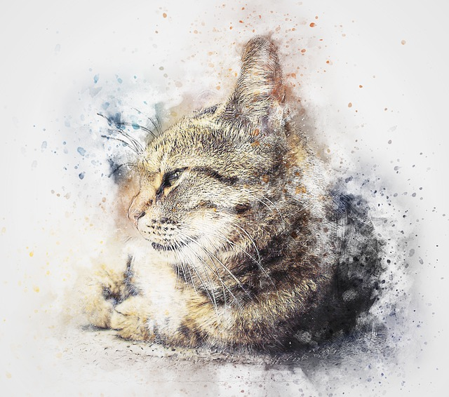 Cat, Animal, Art, Abstract, Watercolor, Vintage