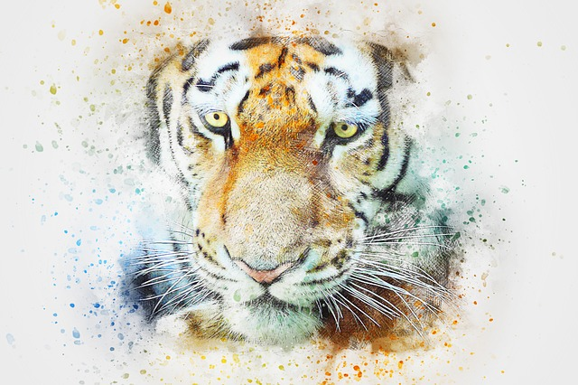 Tiger, Animal, Art, Abstract, Watercolor, Vintage, Cat