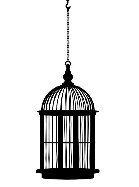 Birdcage, Cage, Bird Cage, Black, Vintage, Decoration