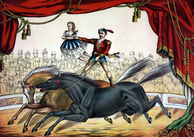 Circus, Act, Horse, Horses, Riding, Vintage, Painting