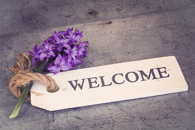 Hyacinth, Flower, Violet, Purple Flower, Spring Flower