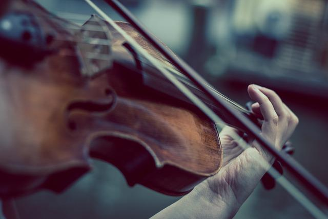 Violin, Violinist, Music, Classic